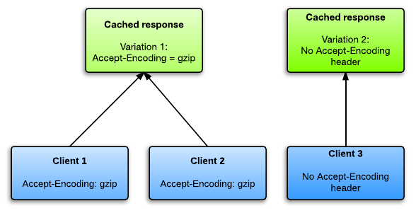 HTTP caching Vary header effect