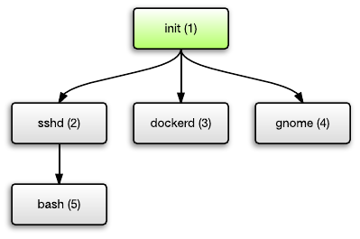 Unix process hierarchy